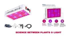 Science between Plants & Light